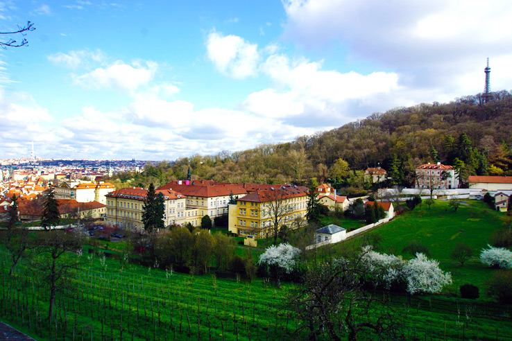 Surviving Europe: Discovering Prague 4 Days in the Bohemian Capital - 16