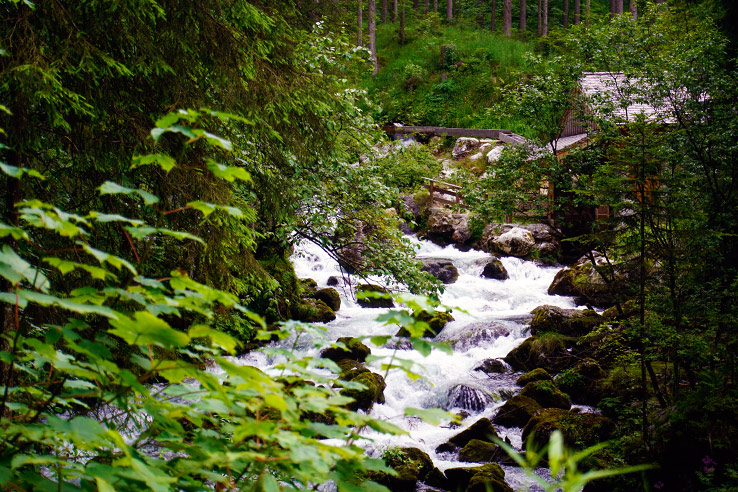 Surviving Europe: Salzburg Day Trips - Finding Paradise at Golling Waterfall - Golling Stream