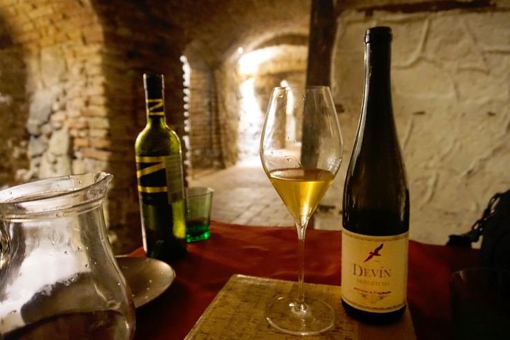Surviving Europe: 5 Days in Bratislava Our Guide to the Capital of Slovakia - Grand Cru Wine Cellar