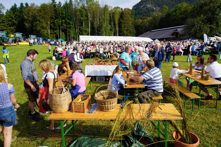 Surviving Europe: Almabtrieb in Austria A Cow Parade in the Alps the Alps - Basket Weaving