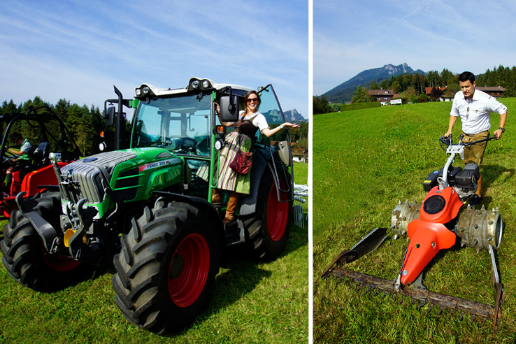 Surviving Europe: Almabtrieb in Austria A Cow Parade in the Alps the Alps - Us on Tractors