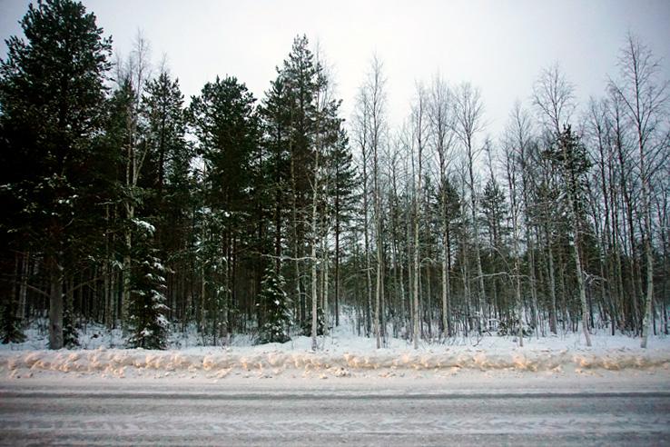 Surviving Europe: We Met Father Christmas at Santa Claus Village in Rovaniemi Finland - Winter Wonderland