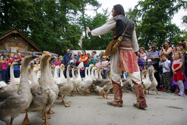 Surviving Europe: Kaltenberger Ritterturnier: Largest Jousting Tournament in the World - Geese
