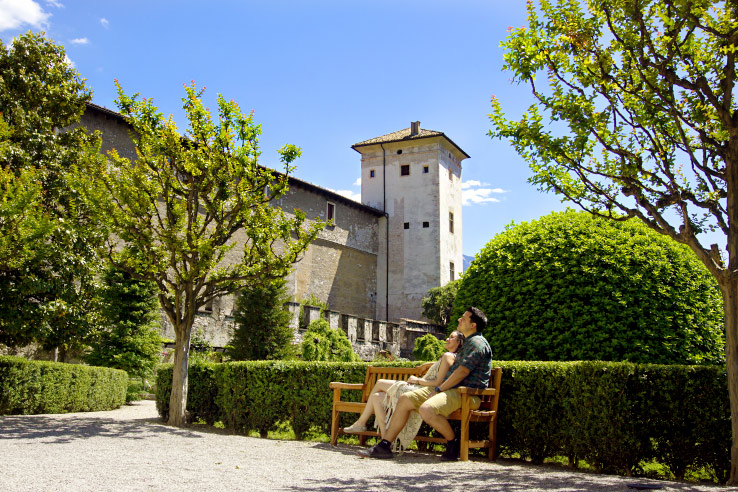 Surviving Europe: Moving Back Surviving Europe Takes on the USA - Trento Gardens